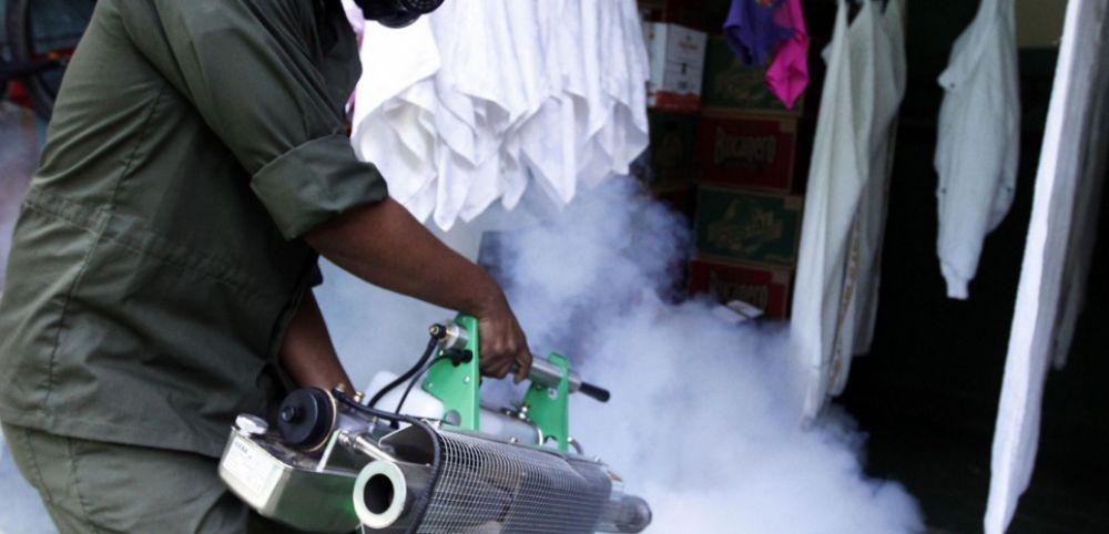 Обработка горячим туманом от муравьёв