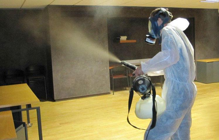 Насекомых уничтожают, опрыскивая помещение инсектицидами